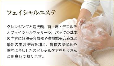 フェイシャルエステ :クレンジングと泡洗顔、首・肩・デコルテとフェイシャルマッサージ、パックに、各種美容機器や高機能美容液など最新の美容技術を加え、お悩みや季節に合わせたスペシャルケアです。